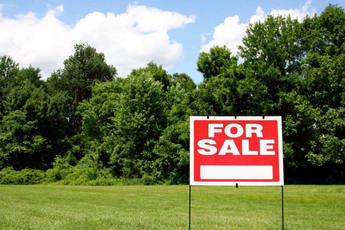 RLP Maximum Shares New Property Listings