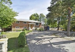 Detached Home For Sale | N4659554